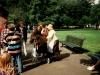 Bärenjette  umringt von Besuchern des Bärenzwingers