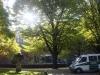 Im Köllischen Park