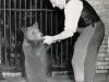Bärenvater Porath mit einem junge Bären © Foto Privat