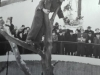 August Porath deckt den Futtertisch in luftiger Höhe Foto © Privat