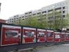 Foto © Berliner Bärenfreunde e.V.