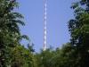 Blick auf den Fernsehturm Foto © Frau Junge
