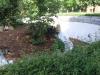 Schräge in den ehemaligen Wassergraben Foto © Frau Junge