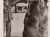 Die Schweizer Bären, Urs und Vreni mit Bärenvater Porath AK - Sammlung Junge