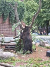 Besuch aus Hof (05.08.2006)